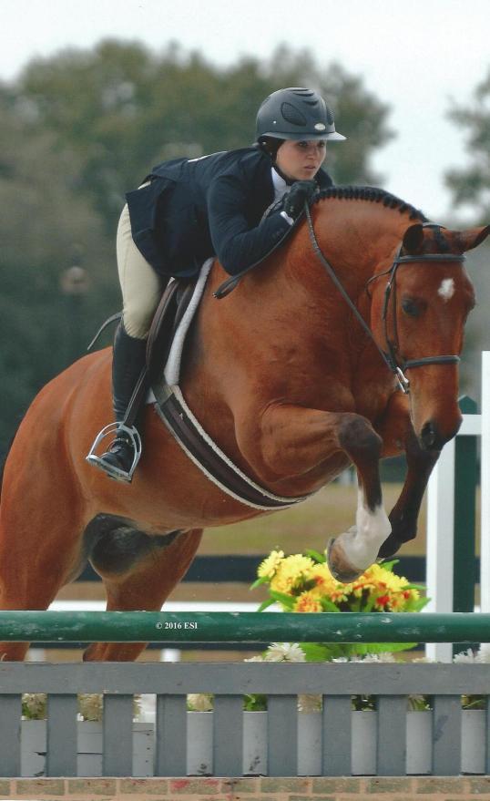 Excel Supplements Rider Lauren McGuire