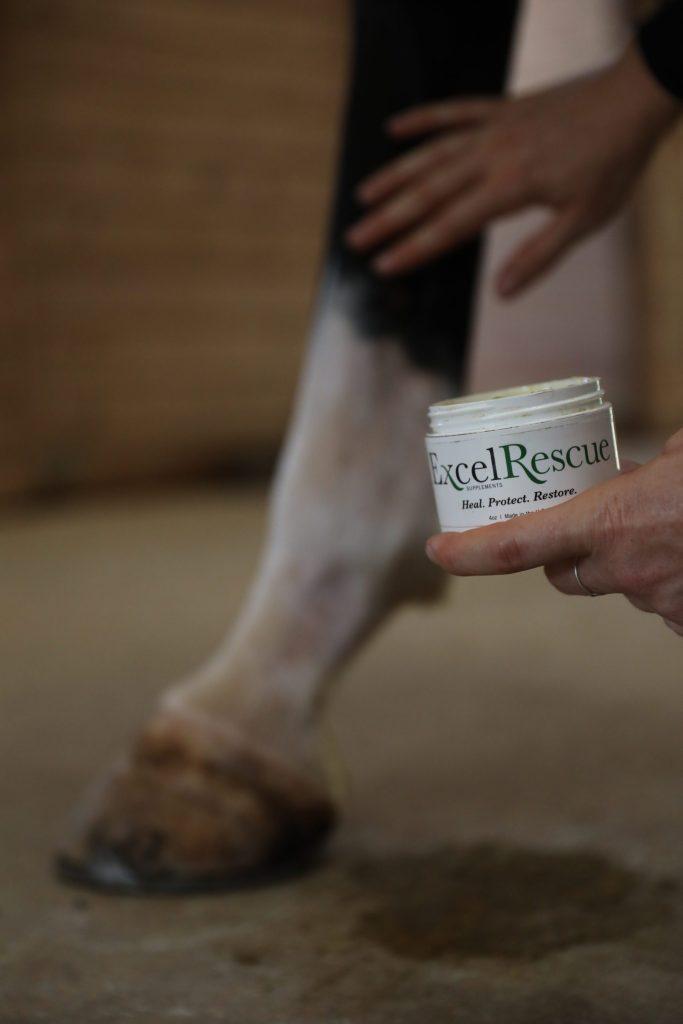 Care Healing Salve Anti-bacterial