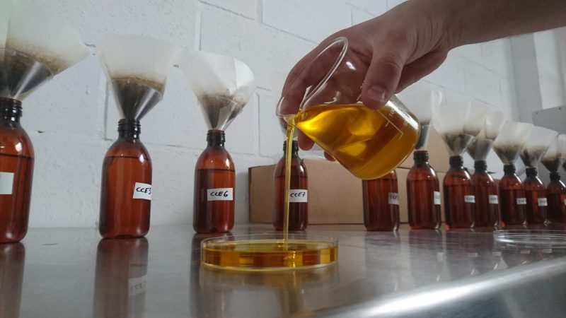 Testing the Varieties of Camelina Oil