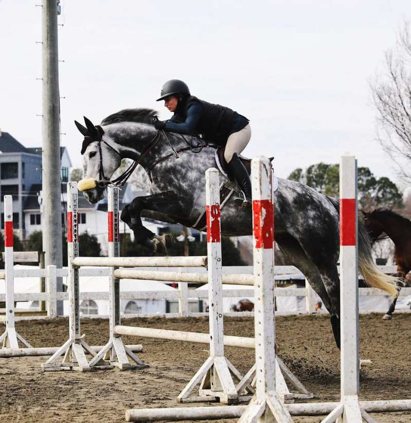 FEI safe Excel Supplements