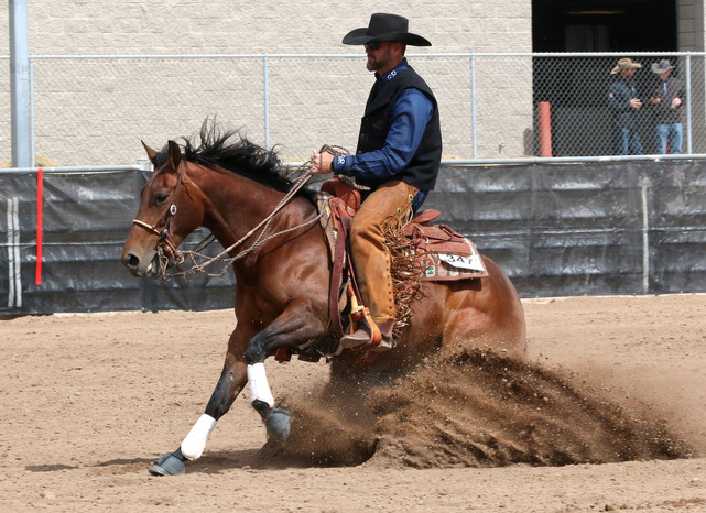 Man on Brown Horse Sliding