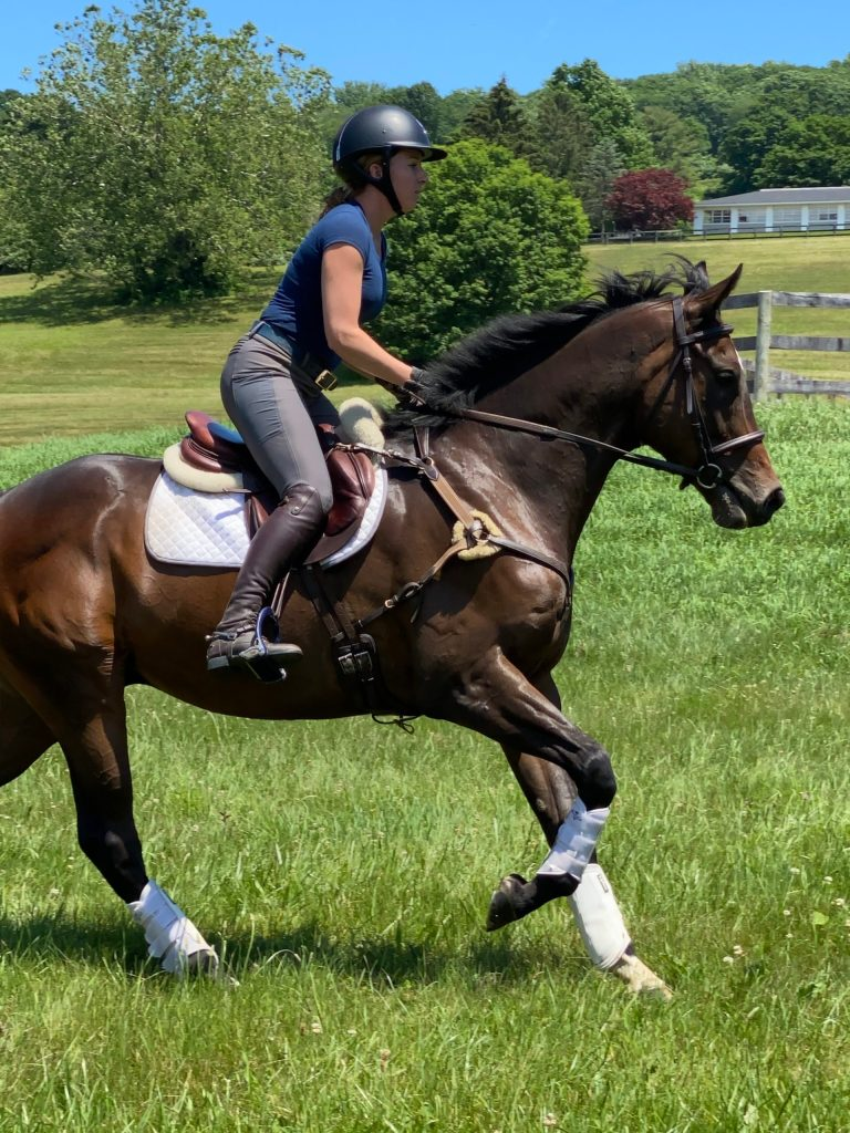 Akindale Trainer Monique Riding Bay Thoroughbred