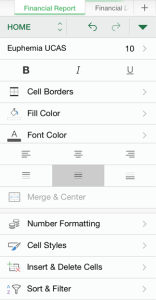 Excel App Formatting Options