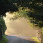 Trou de lumière dans la brume | Photo : VS