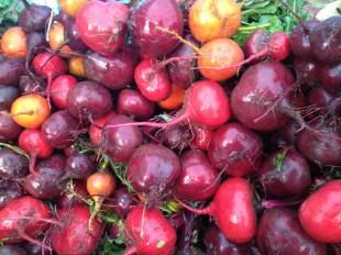 ... bushels of beets ...
