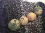 Dryer Balls Copyright Shelagh Donnelly