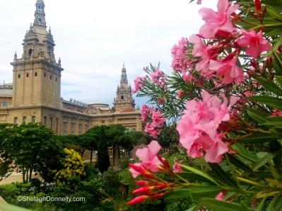 Barcelona Floral1954 Copyright Shelagh Donnelly