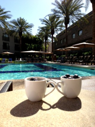 Breakfast at the Ocatilla Pool Arizona Biltmore 6869 Copyright Shelagh Donnelly