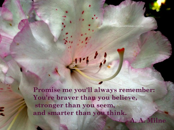 Always Remember 7532 Copyright Shelagh Donnelly