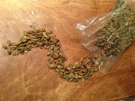 Roastd Pumpkin Seeds Copyright Shelagh Donnelly
