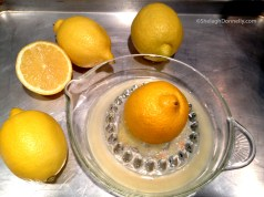 Lemons Copyright Shelagh Donnelly