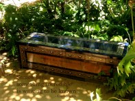 Seville Bench 2392 Copyright Shelagh Donnelly