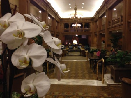 Fairmont Olympic Seattle 5663 Copyright Shelagh Donnelly