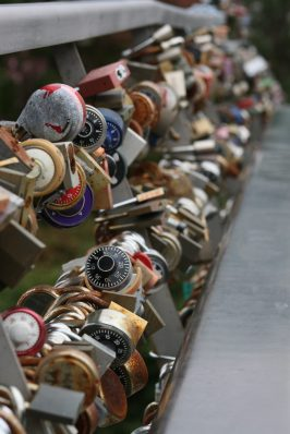 18_7008 Rideau-Canal-Lovelocks-Copyright-Shelagh-Donnelly