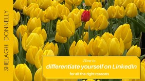 How-to-differentiate-yourself-on-LinkedIn-for-all-the-right-reasons-copyright-Shelagh-Donnelly