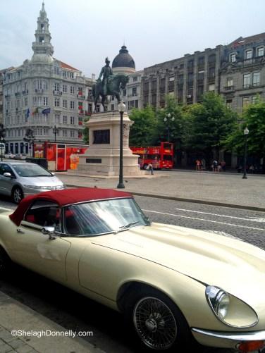 Porto Jaguar 2376 Copyright Shelagh Donnelly