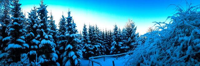 winter-941242_640