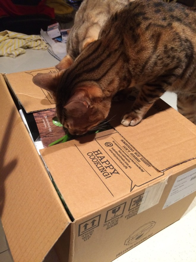 Veggie Box - Inspection