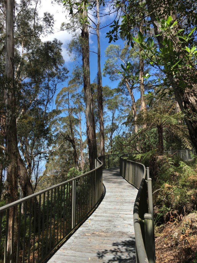 Fred Piper Lookout Walkway