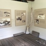Davidson Whaling Station - Inside Displays