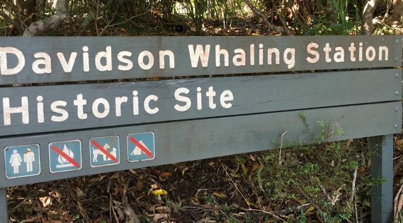 Davidson Whaling Station