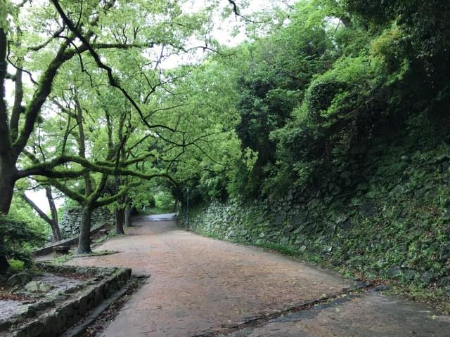 Climbing towards Wakayama Castle