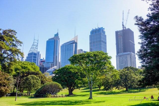 悉尼皇家植物園及悉尼中央商業區 Sydney Royal Botanic Gardens and Sydney CBD