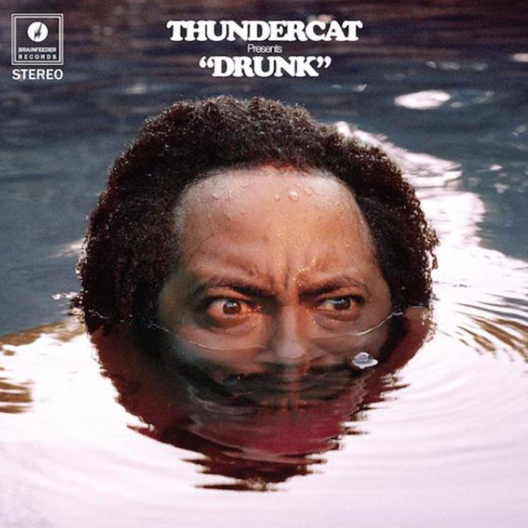 ThundercatDrunk