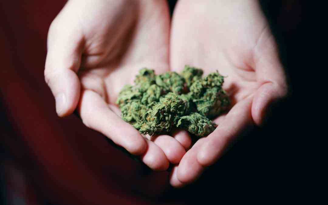 What is the Difference Between Medical Marijuana and Recreational Marijuana?