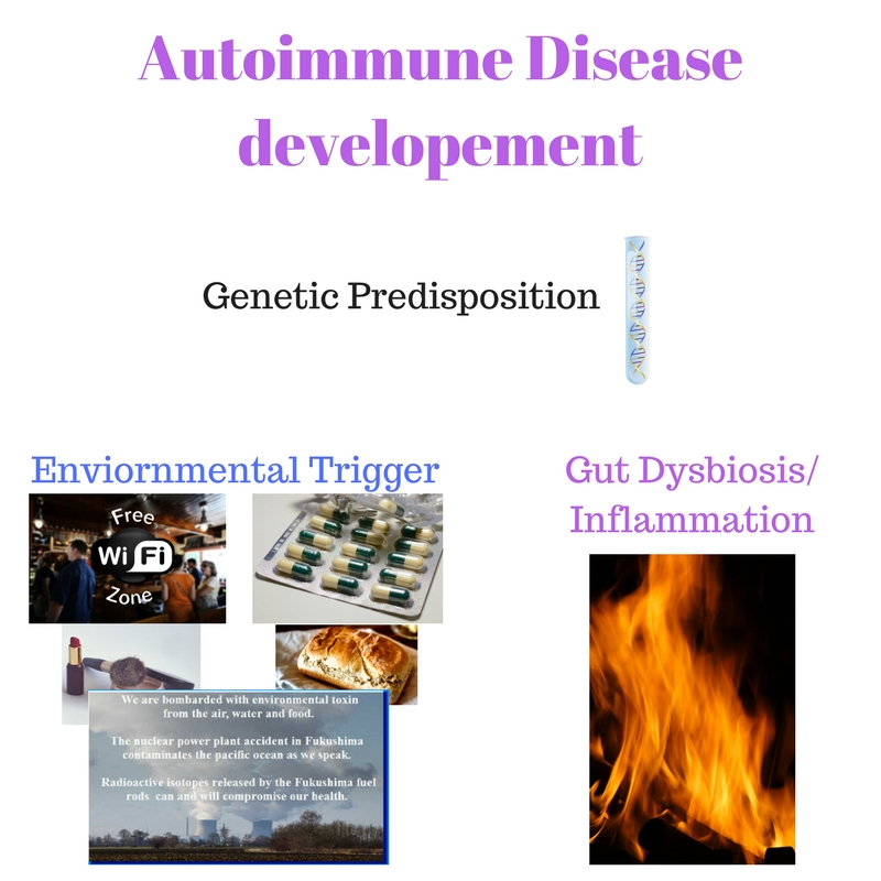 Autoimmune disease developement