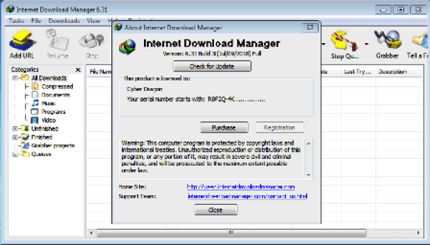 IDM Crack 6.38 Build 2 Retail + Patch 2020 With Torrent Download