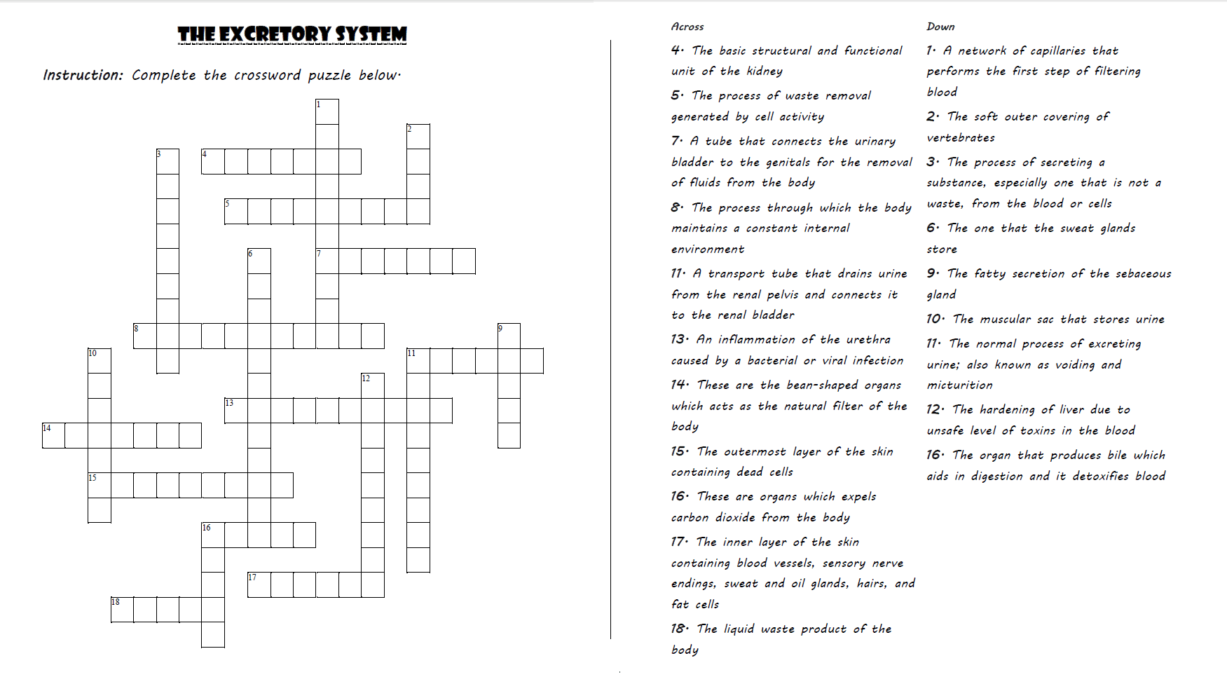 The Excretory System Crossword Puzzle