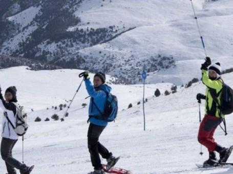 Excursión de 3 horas con raquetas de nieve en Tossa d'Alp