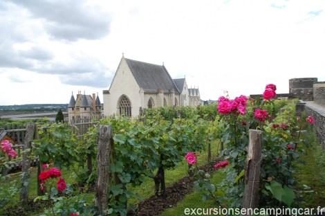 Un des Jardins du château D'angers