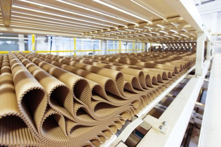Pulp, paper, and packaging industry recruiting
