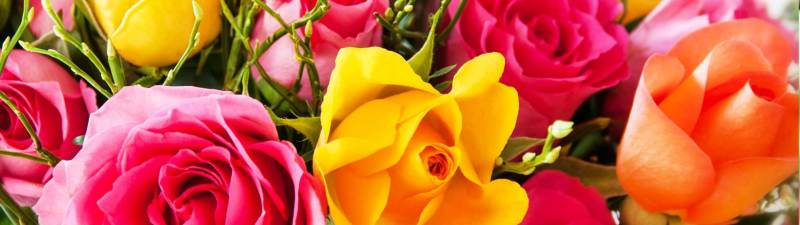 Livraison gratuite des Bouquets de Fleurs au Maroc et dans le monde (Rabat, TemAra, Salé, Kenitra, Skhirate, Bouznika, Casablanca, Marrkech, Agadir)