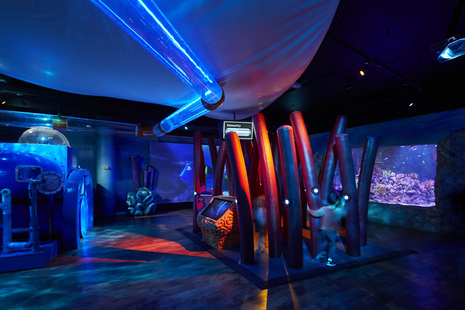 Finding Dory Exhibition Image 7