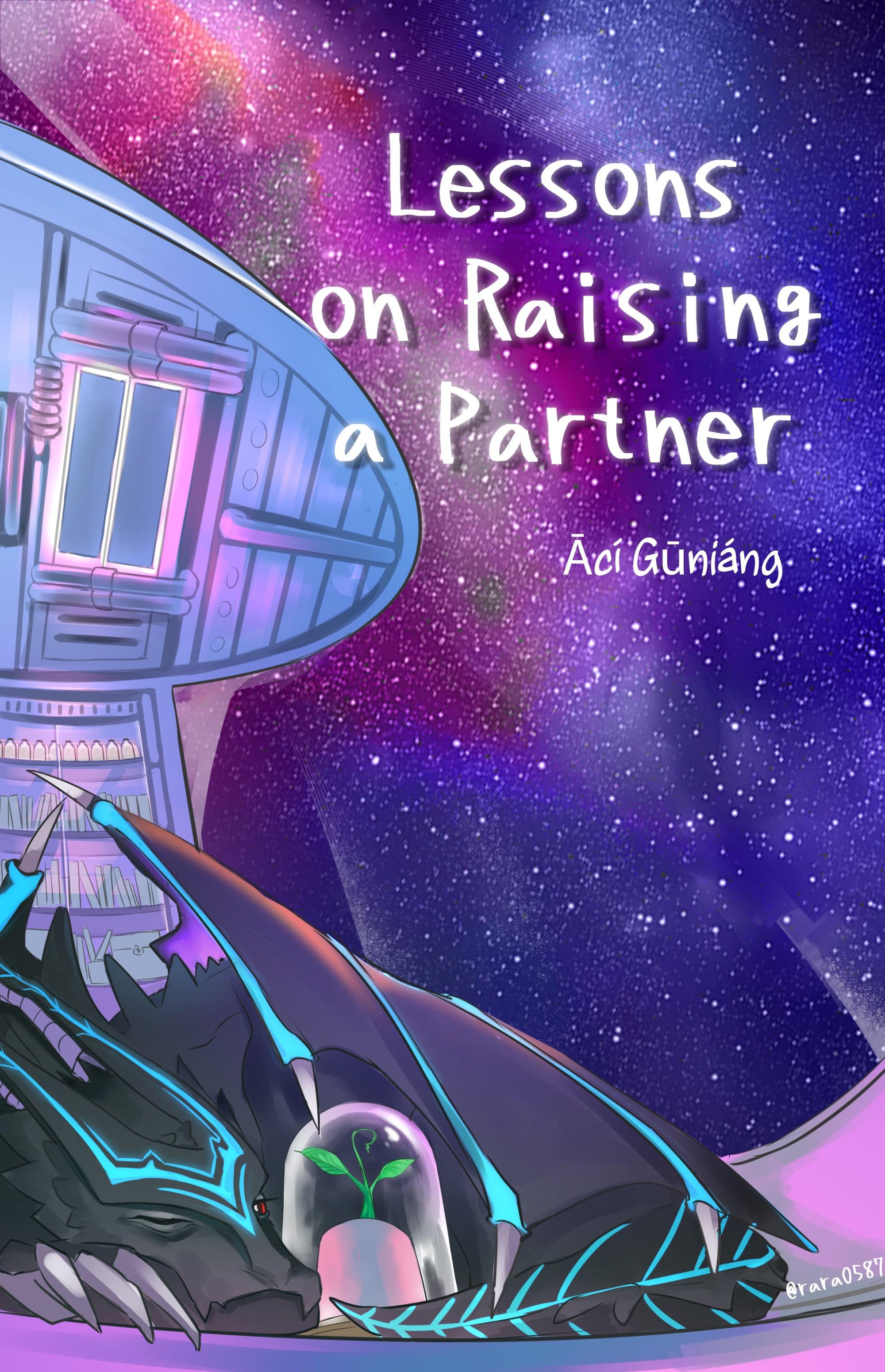 Lessons on Raising a Partner