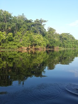 The dark waters of The Rio Negro