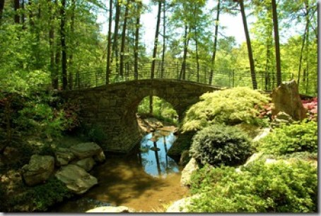 Garvan Woodland Gardens full moon bridge