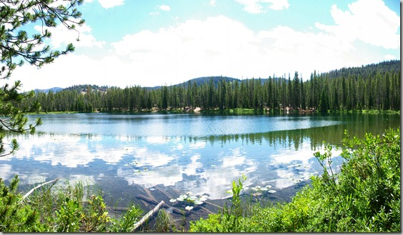Martin Lake next to Bull Creek Campground