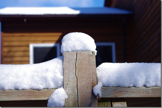 Winter - February, 2011