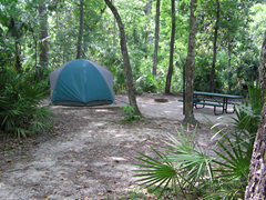 Forest tent camping; Campground Camping; Ocala National Forest.