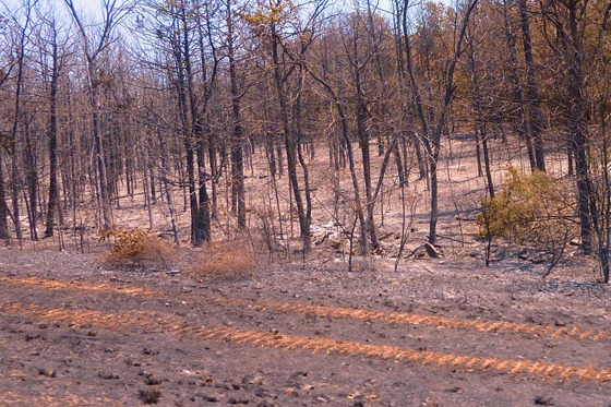 Arkansas 2012 -- Extreme Drought & Fire Danger.