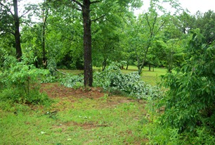 Arkansas - summer of 2009, just after storms that  blew down trees and limbs along with disruption of electrical power