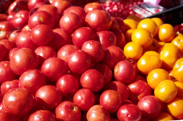tomatoes at Dane County Farmer's market on the Square, Madison Wisconsin, September 15, 2012