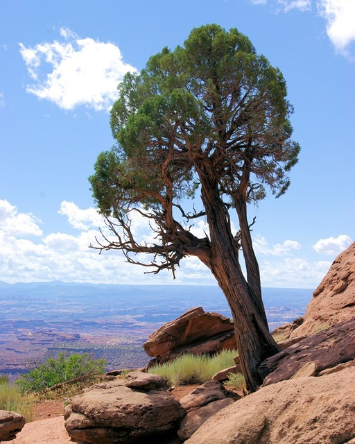 Canyonlands National Park; September 23, 2007