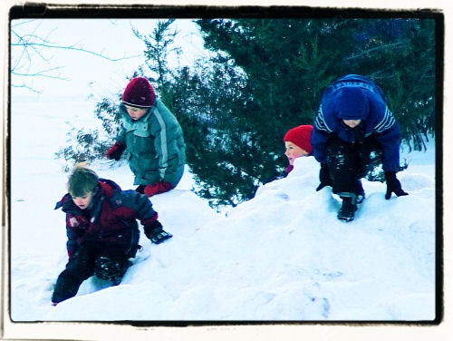 christmas2007.JPG