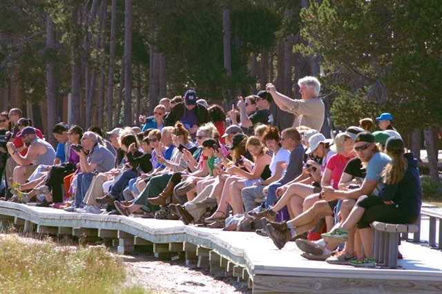 Crowds waiting for the eruption of Old Faithful Geyser, Yellowstone National Park, Wyoming, August 17, 3014