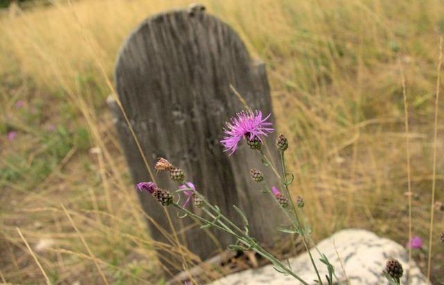 Sand Park Cemetery near Garnet, Montana, August 22, 2014